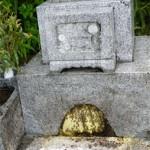 墓石内へのミツバチの営巣