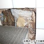 ヤマトシロアリの被害例